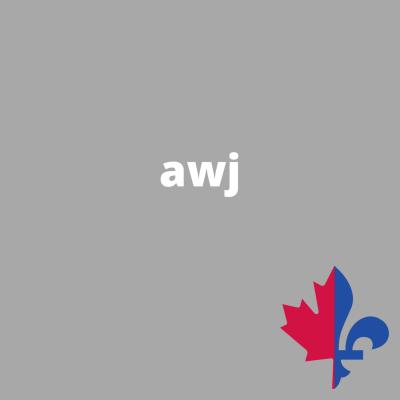 AWJ uni gris- Fait au Québec