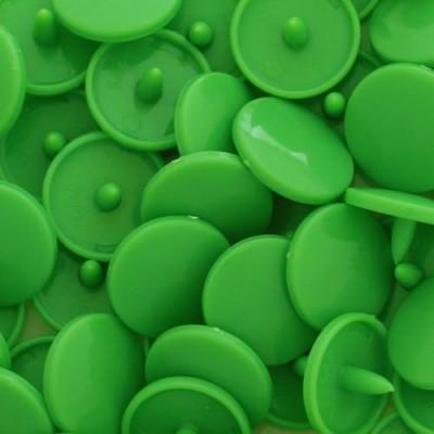 B14 - Vert printemps - Kamsnaps